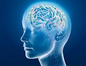 brain-cool-image